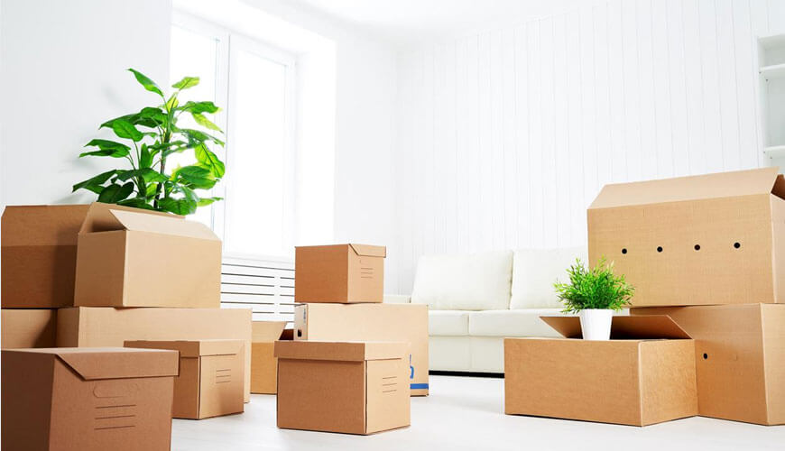 Move In Move Out Cleaning Company